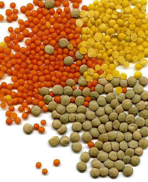 lentils main full أفضل برنامج غذائي لمرضى السكر والكولسترول والضغط